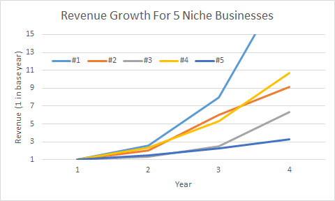 Revenue Growth in Niche Businesses