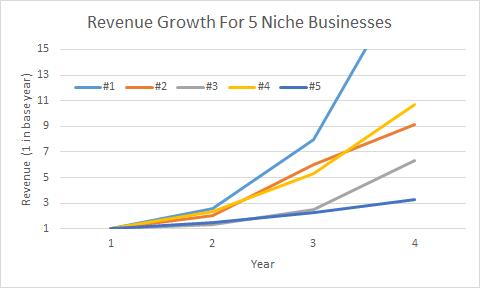 Revenue Growth in Niche Businesses
