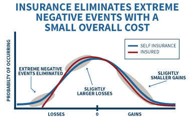 Self Insurance Versus Being Insured - Incurring Small Losses To Avoid Extreme Risks