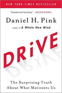 Drive - The Surprising Truth About What Motivates Us by Daniel Pink